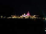 Until next time, Magic Kingdom....